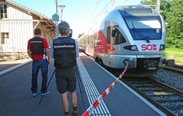 Швейцарская полиция: в атаке на поезд нет признаков теракта